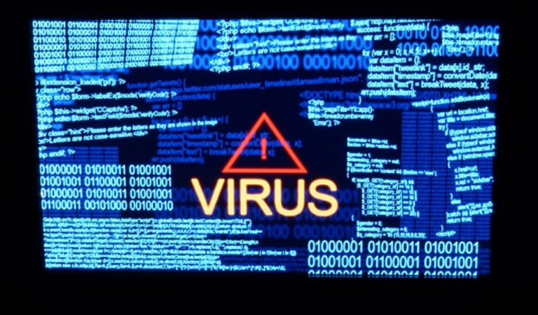 Maine virus removal